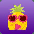 菠萝app安装官方网站最新版