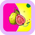 旧版芭乐app下载汅api在线免费版
